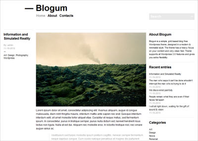 tema wordpress Blogum