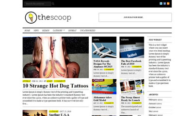 tema wordpress The Scoop