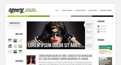 tema wordpress Agency