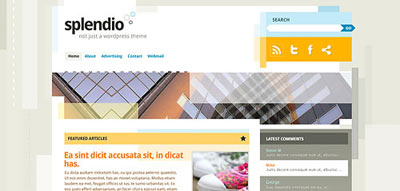 tema wordpress Splendio